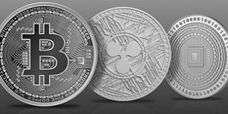 option riesen binär investieren sie in litecoin oder bitcoin